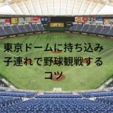 東京ドームに持ち込みした物と子連れで野球観戦するコツ